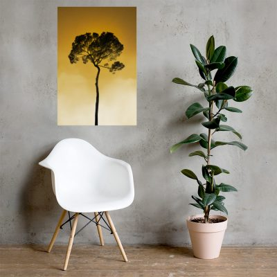 """Tree in the sky, sunrise. Photo Poster Art with a partly glossy, partly matte finish. Dimension: 24""""x36"""""""